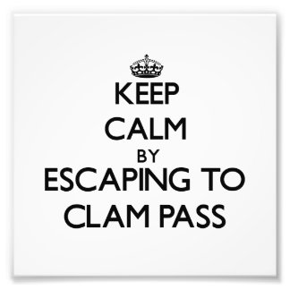 Keep calm by escaping to Clam Pass Florida Art Photo