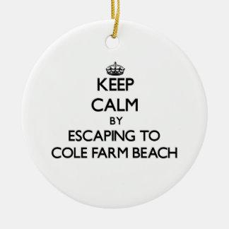 Keep calm by escaping to Cole Farm Beach Rhode Isl Christmas Ornaments
