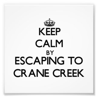 Keep calm by escaping to Crane Creek Ohio Photo Print