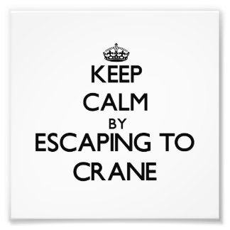 Keep calm by escaping to Crane Massachusetts Photographic Print