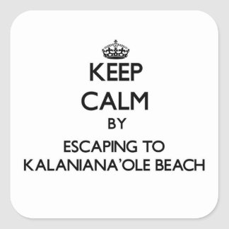 Keep calm by escaping to Kalaniana'Ole Beach Hawai Square Sticker
