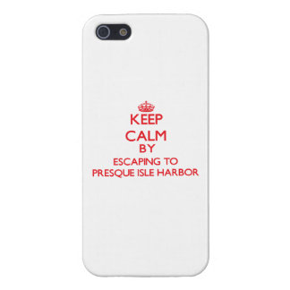 Keep calm by escaping to Presque Isle Harbor Michi iPhone 5 Covers