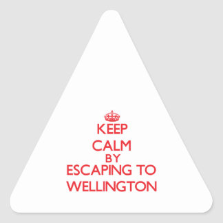 Keep calm by escaping to Wellington Maryland Triangle Stickers