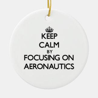 Keep calm by focusing on Aeronautics Christmas Ornament