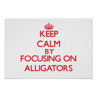 Keep calm by focusing on Alligators Posters