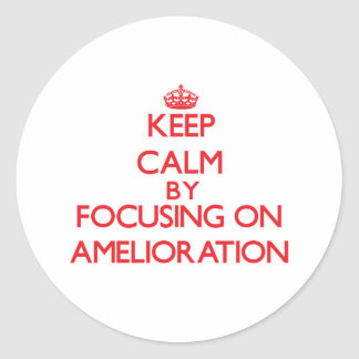 Keep Calm by focusing on Amelioration Classic Round Sticker