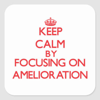 Keep Calm by focusing on Amelioration Square Sticker
