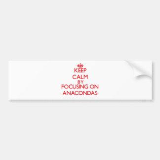 Keep calm by focusing on Anacondas Car Bumper Sticker