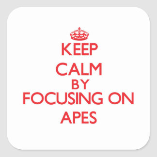 Keep Calm by focusing on Apes Square Stickers