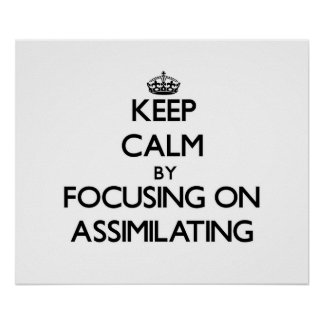Keep Calm by focusing on Assimilating Posters