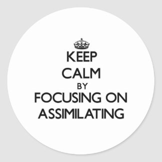 Keep Calm by focusing on Assimilating Sticker
