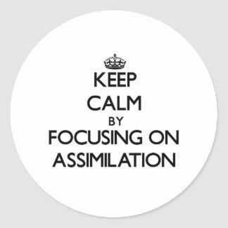 Keep Calm by focusing on Assimilation Round Sticker