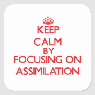 Keep Calm by focusing on Assimilation Sticker