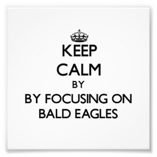 Keep calm by focusing on Bald Eagles Photo Art