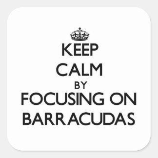 Keep Calm by focusing on Barracudas Stickers