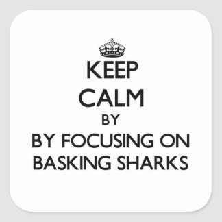 Keep calm by focusing on Basking Sharks Stickers
