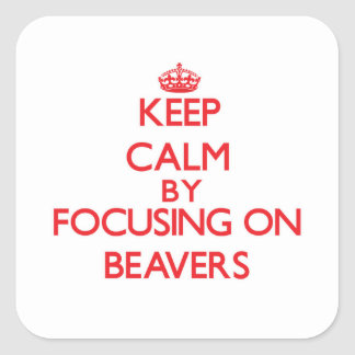 Keep Calm by focusing on Beavers Stickers
