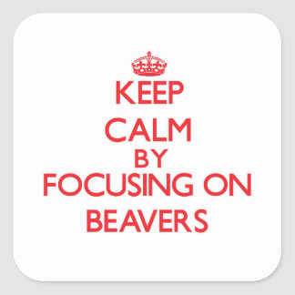 Keep Calm by focusing on Beavers Square Sticker