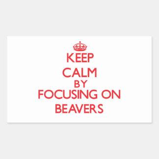 Keep Calm by focusing on Beavers Sticker