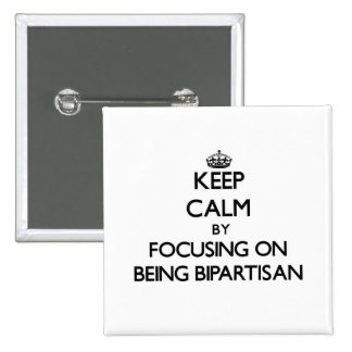 Keep Calm by focusing on Being Bipartisan Pins