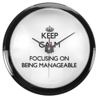 Keep Calm by focusing on Being Manageable Fish Tank Clocks