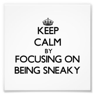 Keep Calm by focusing on Being Sneaky Photo Art