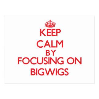Keep Calm by focusing on Bigwigs Post Card