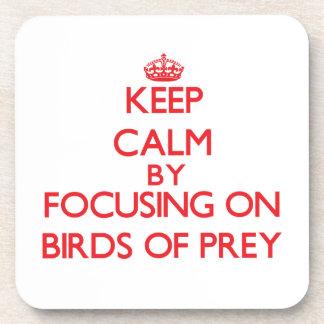 Keep calm by focusing on Birds Of Prey Beverage Coaster