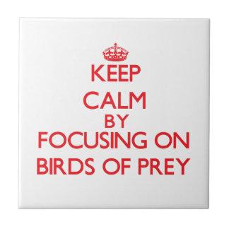 Keep calm by focusing on Birds Of Prey Ceramic Tile