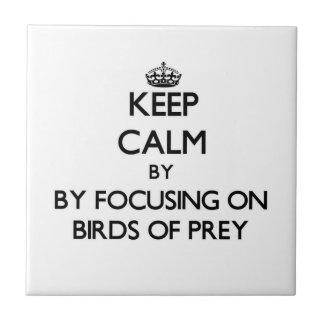 Keep calm by focusing on Birds Of Prey Ceramic Tiles