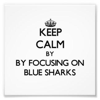 Keep calm by focusing on Blue Sharks Photo Art