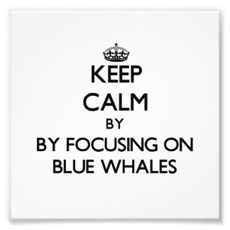 Keep calm by focusing on Blue Whales Photo Art