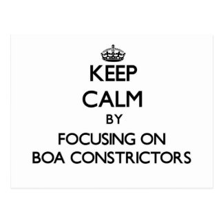 Keep Calm by focusing on Boa Constrictors Postcard