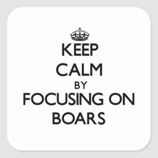 Keep Calm by focusing on Boars Square Sticker