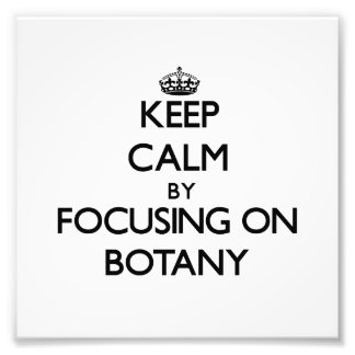 Keep Calm by focusing on Botany Photo