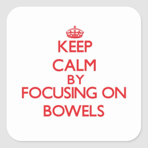 Keep Calm by focusing on Bowels Square Sticker