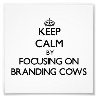 Keep Calm by focusing on Branding Cows Photo Art