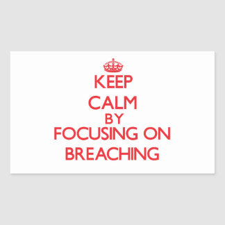 Keep Calm by focusing on Breaching Stickers