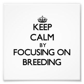 Keep Calm by focusing on Breeding Photo Art