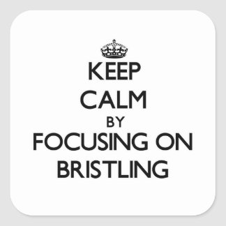 Keep Calm by focusing on Bristling Square Sticker