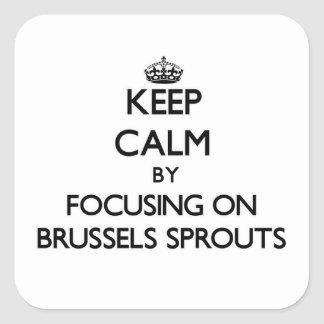 Keep Calm by focusing on Brussels Sprouts Square Stickers