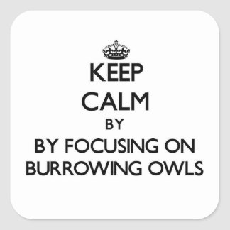 Keep calm by focusing on Burrowing Owls Sticker
