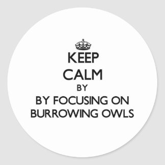 Keep calm by focusing on Burrowing Owls Round Stickers