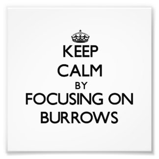 Keep Calm by focusing on Burrows Photograph