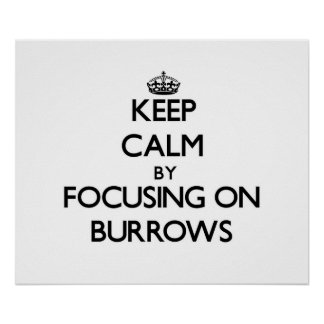 Keep Calm by focusing on Burrows Posters