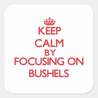 Keep Calm by focusing on Bushels Square Sticker
