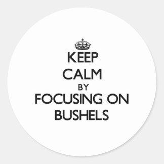 Keep Calm by focusing on Bushels Round Sticker