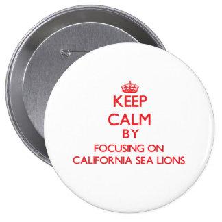 Keep calm by focusing on California Sea Lions Button