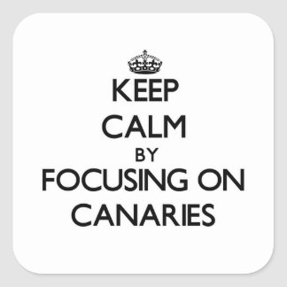 Keep Calm by focusing on Canaries Square Sticker