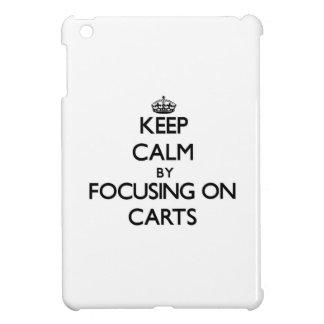 Keep Calm by focusing on Carts iPad Mini Cover